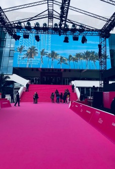 The famous pink carpet that all the celebrities pose on for the Paparazzi at the Film Festival